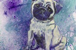 Piesek mopsik z serii Psy i koty