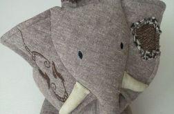 Słoń Dominik