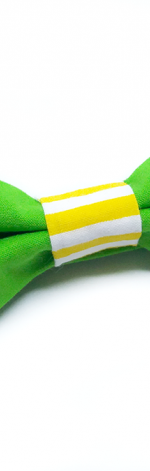 Mucha muszka męska zielona - Fabricate