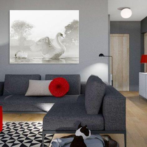 Obraz do salonu Łabędzie, 90 x 70, minimalizm