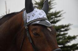 Nauszniki dla konia  OCZY