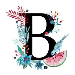 Alfabet B wydruk ilustracji