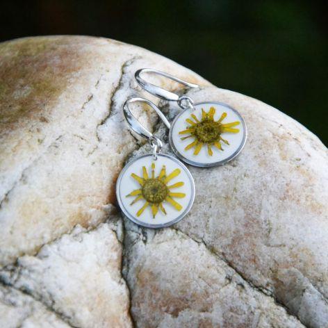 Zatopki żółty kwiat