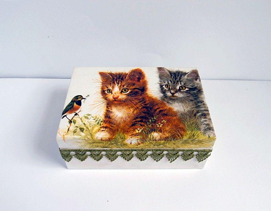 Kasetka z kotami