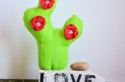 Kompozycja z kaktusem - czerwona