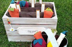 mini ogródek warzywny