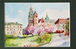 Wiosenny Wawel