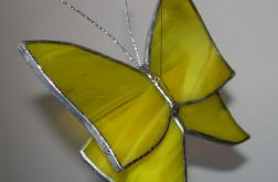 Motyl żółty