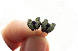 czarne motyle