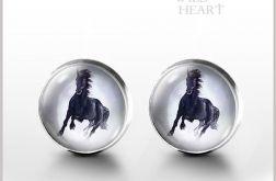 Czarny koń - kolczyki wkrętki