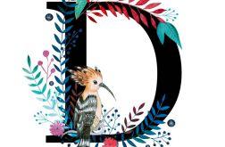 Alfabet D wydruk ilustracji