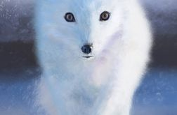 Obraz Biały lis - skandynawski, płótno