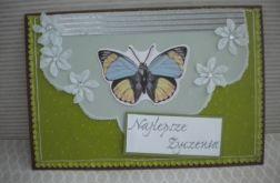 Fantazyjny motyl - kartka
