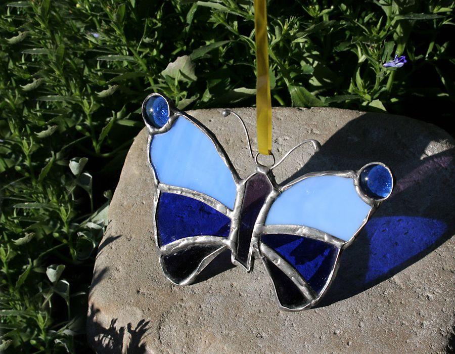 Motyl w niebieskościach