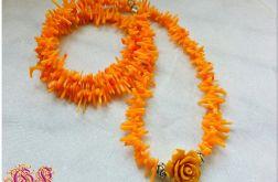 Pomarańczowy koral