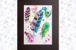 Skarby tropików - kolorowe pióra