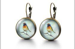 Kolczyki - Kolorowy ptak - antyczny brąz