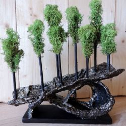 Las w domu - Chrobotek norweski i rzeźba Eko