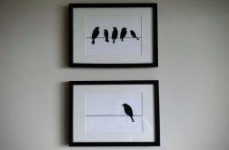 Grafika w ramie 23 x 32 - Zestaw Ptaki