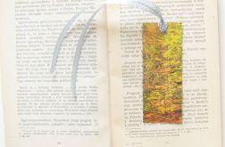 Zakładka do książki jesień 9