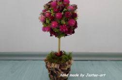 Amarantowe drzewko 1