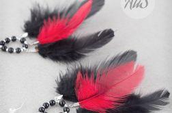 Czerwono czarne piórka