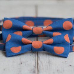 Muchy dla taty i syna - Blue & Orange