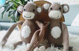 Małpki bliżniaki