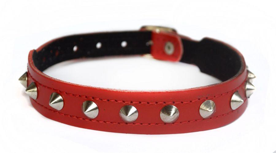 Red Puppy Spike