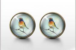 Kolorowy ptak- antyczny brąz - kolczyki wkrętki