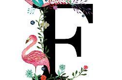 Alfabet F wydruk ilustracji