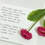 Zaproszenie na 18 osiemnaste urodziny green - zaproszenie na 18-tkę