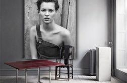 Dekoracje wnętrz - Kate Moss