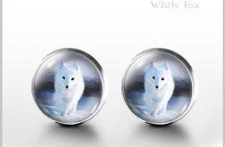 Biały lis - kolczyki wkrętki