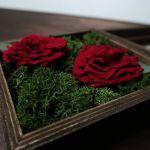 Pudełko na obrączki czerwone dzikie róże - kwiaty stabilizowane