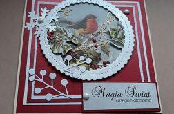 Kartka świąteczna 15 z ptaszkiem