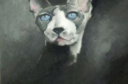Obraz olejny kot blue eyes
