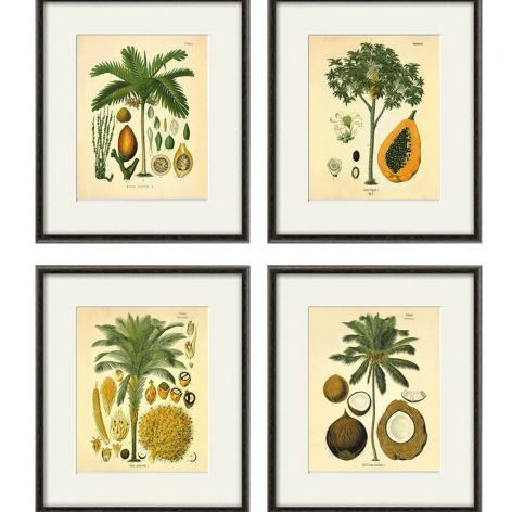 Palmy wydruk grafika wydruk vintage
