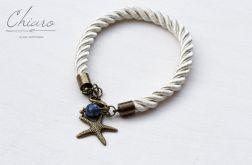 Morskie opowieści - rozgwiazda
