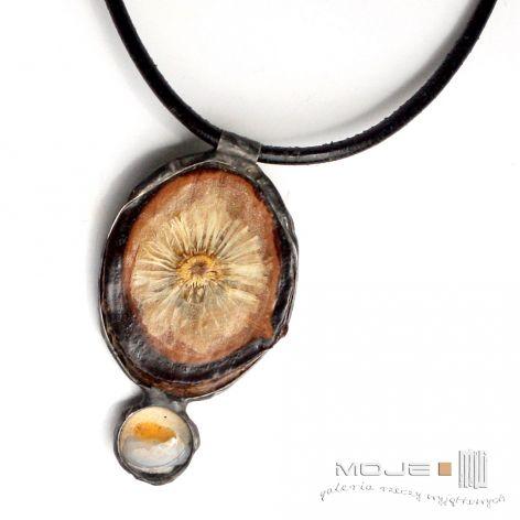 Oko stokrotki III