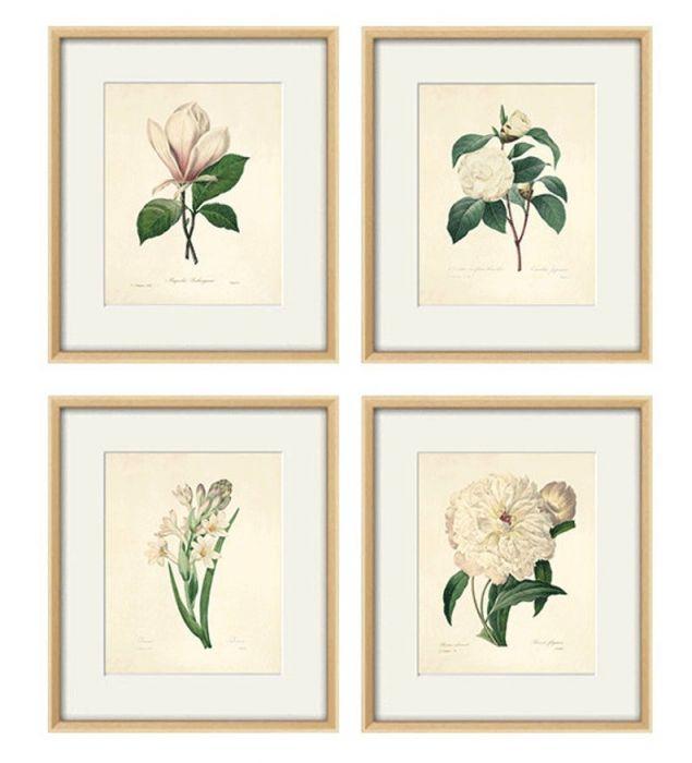Grafika Kwiaty wydruk  plakat vintage wydruk