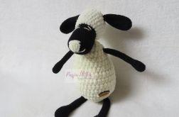 Mała owca