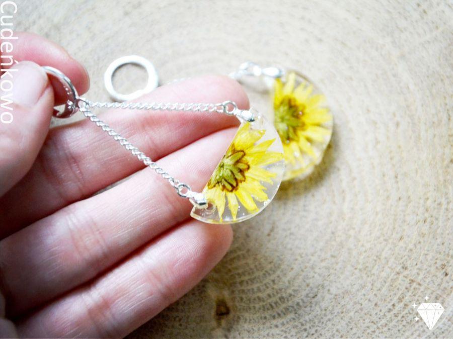 Zatopki żółte kwiaty - 4