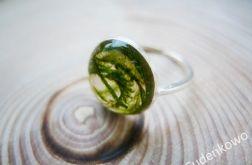 Zatopek pierścionek z mchem