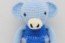 Małpka niebieska w spodenkach