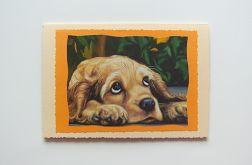 Kremowa kartkaz psem
