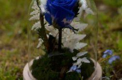 Wieczna róża w szklanej kopule 19cm z mchem.