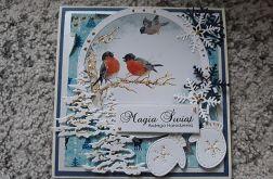 Kartka świąteczna z ptaszkami