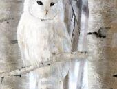 Obraz - Biała sowa - płótno - malowany