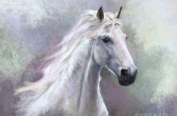Obraz Biały koń - płótno
